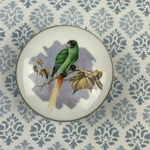 Parrot Transfer Ware Lidded Trinket Dish